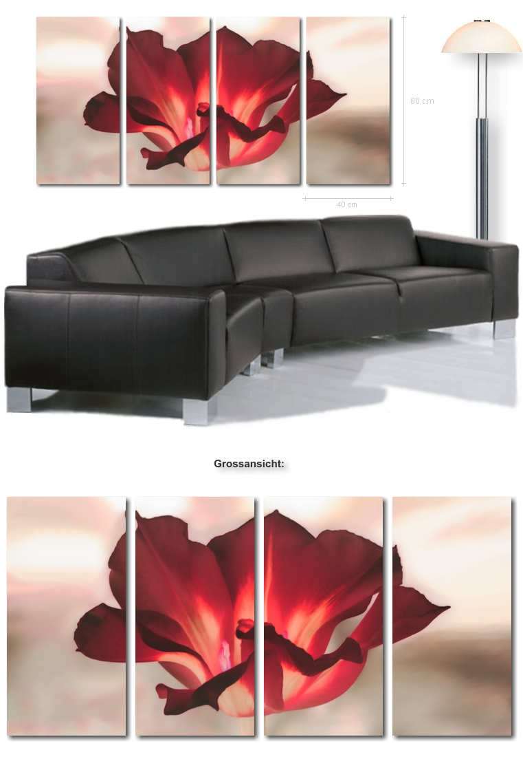 ultra moderne bilder xxl bild tulpe auf leinwand tulpenbilder kunstbilder blumenbilder. Black Bedroom Furniture Sets. Home Design Ideas